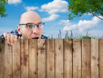 Neighbor looking over fence.